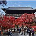 京都南禪寺紅葉如畫