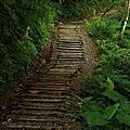 礁溪林美步道