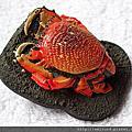 螃蟹_扭蛋/轉蛋/食玩