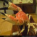 螃蟹_旅遊/生態