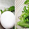 醬燒小卷燴雞蛋