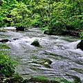 2018日本東北之旅Part7-奧入瀨溪流