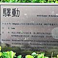 公共藝術---臺北市3信義區/大安區