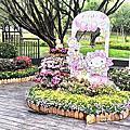 城市公園游覽-臺北市