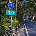 【北橫公路】蜿蜒山間單車行 (20150228)