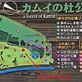 カムイの杜公園キャンプ場