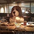 西門町愛犬