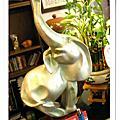 大象牛排:法啦象
