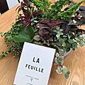 【Miller Harris】La Feuille (常春藤)