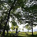 2013-6-30北海道女子修道院-函館朝市-北斗號-熊牧場