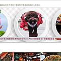 2020.02.25新竹Luau.pizza柴寮披薩