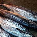 蒜香土魠魚
