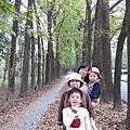 新威森林公園.天台山道場.一本書民宿