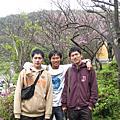 2009.3.1陽明山花季