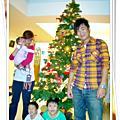 組裝10年的家中聖誕樹