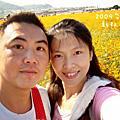 2009台中縣新社花海節