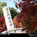 楓情.光明寺/大原三千院
