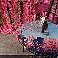 7-11櫻花主題店~首爾櫻花季~~7-11國館門市
