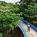 九華山銅鑼自行車道 ( 天空步道 )