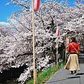 2019 京都 ( mini 奈良 )