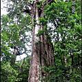 悠遊D4-20070524 桃園拉拉山