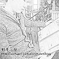 【新竹】Square's 格子美式餐廳