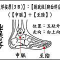腿部綜合按摩