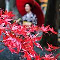 2009 京都 南禪寺 秋雨