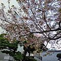 2015東京行-無法分類區