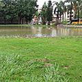 20080718淹水的彰師