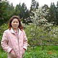 2007.04.07-08 阿里山家族二日遊