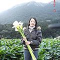2007.02.23 竹子湖海芋日