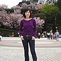 2008.03.16 天元寺.櫻花季