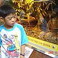 941113木柵動物園