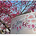 2019后里泰安櫻花季