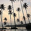 2017_12 Amanwella, Sri Lanka