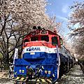2018_04 Busan, South Korea