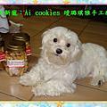 Ai cookies璦璐琪雅手工餅乾