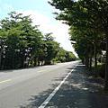 縣道174 平面路段