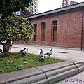 20140316 西本願寺特展