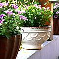迎接初夏...最美的花園~