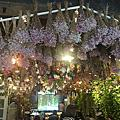 韓國首爾花系列咖啡廳