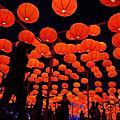 2013台灣燈會-賞燈去