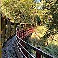 太平山~秋季