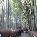 2010.11京阪北近畿5