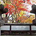 |東京/上野| 公園的烏鴉多到能一箭射死三隻