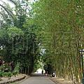 20140112 Botanic Garden