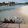 20131207 Brisbane人工海灘