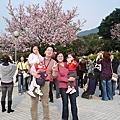 990312悠閒下午遊--淡水天元宮<櫻花盛開嚕!>