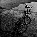 2011.07.18單車後龍溪畔